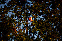 A hot air balloon floats over a residential neighborhood near the airport in Bloomington, Indiana on Saturday, Sept. 19, 2020. (Photo by James Brosher)