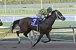 Onlyforyou (KY) with jockey Javier Castellano on board remains undefeated in the Davona Dale Stakes G2 at Gulfstream Park.  Hallandale Beach, Florida 02-22-2014