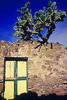 Ruine mit Feigenkaktus in der Geisterstadt Real de Catorze, Mexiko, Nordamerika