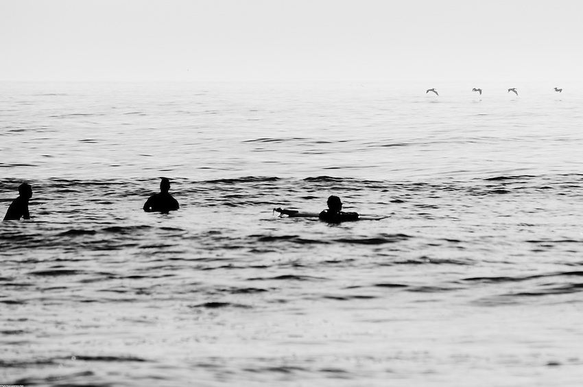Early morning Virginia Beach surfers wait patiently for the next wave while pelicans search for breakfast.
