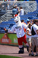 The Binghamton Rumble Ponies mascot Rowdy before a game against the Hartford Yard Goats on July 9, 2017 at NYSEG Stadium in Binghamton, New York.  Hartford defeated Binghamton 7-3.  (Mike Janes/Four Seam Images)