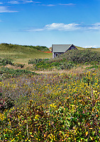 Dune shack, Aquinnah, Martha's Vineyard, Massachusetts, USA