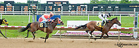 The Great Gonzo winning at Delaware Park on 6/6/13