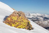 Lichen-covered rock on the summit of Mt. Bierstadt