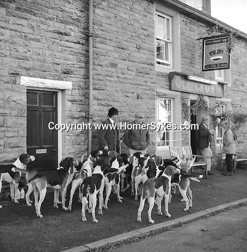 The Blencathra Foxhounds. Barry Todhunter manages the hounds outside The Old Crown while many supporters meet inside to sample the locally brewed beers: Helvellyn Gold, Skiddaw Special Bitter, Blencathra Bitter, Old Carrocks Strong Ale, or perhaps, Doris 90th Birthday Ale. Hesket Newmarket, Cumbria..