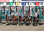 8.27.10 Trickmeister breaks in the Pleasant Colony Stakes (#1)