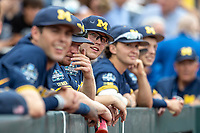 Michigan Wolverines outfielder Dominic Clementi (13) before Game 6 of the NCAA College World Series against the Florida State Seminoles on June 17, 2019 at TD Ameritrade Park in Omaha, Nebraska. Michigan defeated Florida State 2-0. (Andrew Woolley/Four Seam Images)