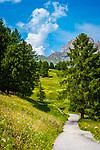 Italien, Suedtirol (Trentino - Alto Adige), Dolomiten, Groednertal: einsame Landstrasse oberhalb von Wolkenstein in Groeden, im Hintergrund ei Puezgruppe | Italy, South Tyrol (Trentino - Alto Adige), Dolomites, Val Gardena: rural road above Selva di Val Gardena, at background Gruppo del Puez mountains