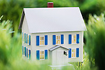 Toy house in grass