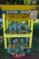 Roadside fruit stand at Honokahau, Maui, Hawaii.