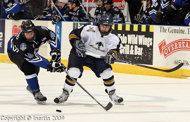 SIOUX FALLS, SD - APRIL 3:  Luke Greiner #15 of the Sioux Falls Stampede battles for the puck with Eric Meland #16 of the Lincoln Stars in the second period of the Stampede regular season finale Friday night at the Sioux Falls Arena. (Photo by Dave Eggen/Inertia)