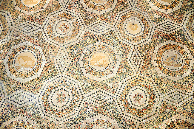 Roman geometric mosaic composed of stars and octagonal medellions with birds in them. Late 3rd century AD, Thurbo Majus. Roman mosaics from the north African Roman province of Africanus . Bardo Museum, Tunis, Tunisia.