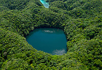 Palau Oct 2007 Aerial of one of the secret jellyfish lakes, not accessiable for Tourist, protected and conservation area.Palau, Micronesia