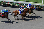 AUG 21,2014:Last stretch and horses at Del Mar in Del Mar,CA. Kazushi Ishida/ESW/CSM