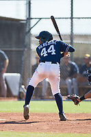 San Diego Padres right fielder Cristian Heredia (44) at bat during an Instructional League game against the Milwaukee Brewers at Peoria Sports Complex on September 21, 2018 in Peoria, Arizona. (Zachary Lucy/Four Seam Images)