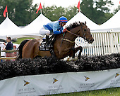 Queens Cup winner Triplekin leads early in the National Hunt Cup at Radnor.