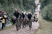 Luke Rowe (GBR/INEOS Grenadiers) leading this bunch of colers through the Arenberg Forest / Trouée d'Arenberg / Bois de Wallers<br /> <br /> 118th Paris-Roubaix 2021 (1.UWT)<br /> One day race from Compiègne to Roubaix (FRA) (257.7km)<br /> <br /> ©kramon