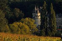 Europe/France/Centre/Indre-et-Loire/Vallée de la Loire/Rigny-Ussé : Le Château d'Ussé