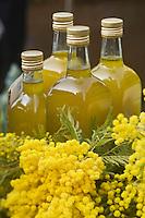 Europe/France/06/Alpes-Maritimes/Nice: Mimosa et Huile d'Olive de Nice sur le Marché  paysan du Cours Saleya