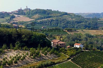 Italien, Piemont, Weinanbau bei Acqui Terme  Italy, Piedmont, vineyards near Acqui Terme