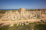 Leptis Magna (Lepcis Magna), one of the most spectacular and unspoilt Roman ruins in the Mediterranean, located on Libya's coast about 130km east of the modern capital Tripoli. However despite such an impressive and vast site it is largely empty given the recent political climate between Libya and the West. Small groups of western tourists do visit under guided tours as the political climate thaws but the site lies largely empty and not highly secured. These images taken in March 2006 show the Marketplace in Leptis Magna, where a recent theft had appeared to have taken place with some of the marble bases, depicting dolphins and griffins, that held the market stalls, appear to have been ripped out of the ground and stolen. The tyremarks of the getaway veicle are nearby. Despite being a UNESCO world heritage site - one of five in Libya - the preservation and security of such unique heritage must be a concern.