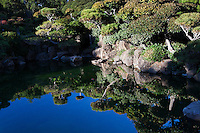 A koi pond at the Japanese Gardens in Hayward becomes a reflecting pond, mirroring the deep blue sky and the delicately sculpted foliage.  Look closely to see turtles and the nested miniature waterfall.