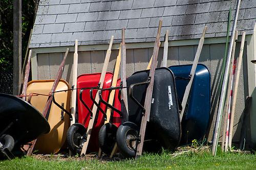 Wheelbarrows lined up for use, Yarmouth Community Garden, Maine, USA