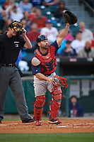 Pawtucket Red Sox catcher Dan Butler (12) during a game against the Buffalo Bisons on August 31, 2017 at Coca-Cola Field in Buffalo, New York.  Buffalo defeated Pawtucket 4-2.  (Mike Janes/Four Seam Images)