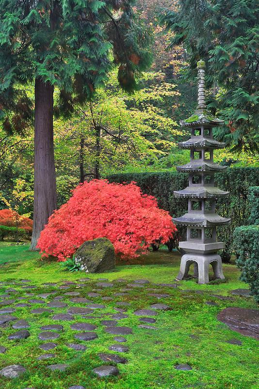 Fall color and pagota at Japanese Gardens. Portland. Oregon