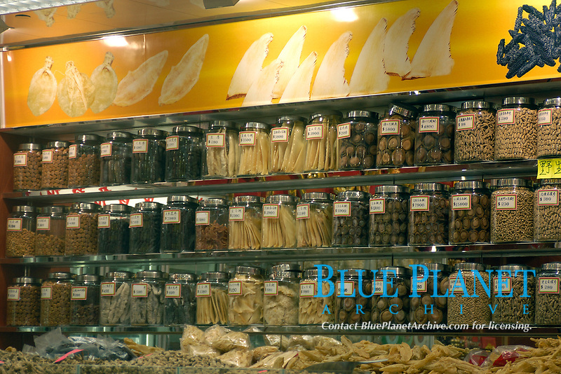 Hundreds of animal parts and products, including shark fins, for sale in traditional chinese medicine store, Hong Kong, China