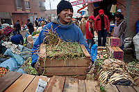 Worker in the Friday Fair.Just 25 years ago it was a small group of houses around La Paz  airport, at an altitude of 12,000 feet. Now El Alto city  has  nearly one million people, surpassing even the capital of Bolivia, and it is the city of Latin America that grew faster .<br /> It is also a paradigmatic city of the troubles  and traumas of the country. There got refugee thousands of miners that lost  their jobs in 90 ´s after the privatization and closure of many mines. The peasants expelled by the lack of land or low prices for their production. Also many who did not want to live in regions where coca  growers and the Army  faced with violence.<br /> In short, anyone who did not have anything at all and was looking for a place to survive ended up in El Alto.<br /> Today is an amazing city. Not only for its size. Also by showing how its inhabitants,the poorest of the poor in one of the poorest countries in Latin America, managed to get into society, to get some economic development, to replace their firs  cardboard houses with  new ones made with bricks ,  to trace its streets,  to raise their clubs, churches and schools for their children.<br /> Better or worse, some have managed to become a sort of middle class, a section of the society that sociologists call  emerging sectors. Many, maybe  most of them, remain for statistics as  poor. But clearly  all of them have the feeling they got  for their children a better life than the one they had to face themselves .