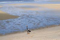 - child plays on the beach of Beira....- bambino gioca sulla spiaggia di Beira