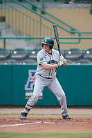 Dartmouth Big Green first baseman Michael Calamari (3) at bat during a game against the USF Bulls on March 17, 2019 at USF Baseball Stadium in Tampa, Florida.  USF defeated Dartmouth 4-1.  (Mike Janes/Four Seam Images)