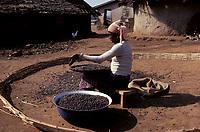 Cote d'Ivoire<br /> ,termittieres<br /> <br /> <br /> (date inconnue)<br /> <br /> PHOTO : Michel Faugere Publiphoto- Agence Quebec Presse