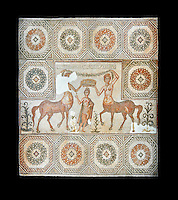 4th century Roman mosaic panel of the Goddess Venus from Ulules (Elles), Tunisia. Venus of Aphrodite is accompanied by 2 female centaurs, half women half horse creatures, known as Am(azoniu) and Titonius. The are crowning Venus The Bardo Museum, Tunis, Tunisia. The Bardo Museum, Tunis, Tunisia. Black background