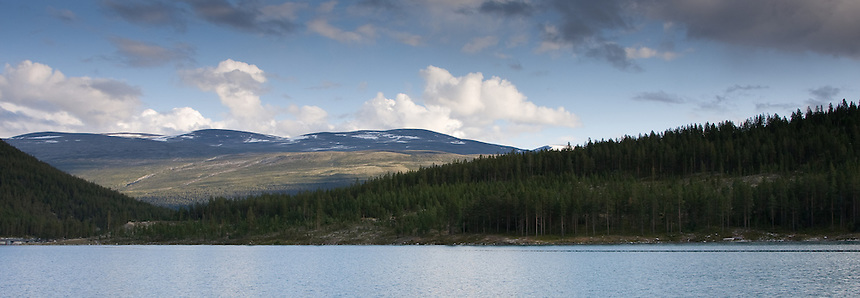 View of Forest, Hillside and Mountains in Norway