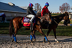 November 3, 2020: Mean Mary, trained by trainer H. Graham Motion, exercises in preparation for the Breeders' Cup Filly & Mare Turf at Keeneland Racetrack in Lexington, Kentucky on November 3, 2020. Alex Evers/Eclipse Sportswire/Breeders Cup