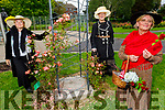 Gillian Wharton, Mary Higgins and Siobhan King in the Tralee Town park on Tuesday, celebrating Blooms day.