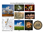 Michael Knapstein had 8 photographs recognized in the 11th Annual International Color Awards. These included Honor of Distiction Awards (Third Place) in Americana and Wildlife.