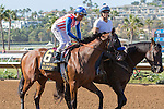 DEL MAR, CA  SEPTEMBER 5: #6 Klimt, ridden by Rafael Bejarano in the post parade  before  the Del Mar Futurity (G1) on September 5, 2016 at Del Mar, CA (Photo by Casey Phillips/Eclipse Sportswire/Getty Images)