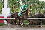 October 17, 2021: Tentador (PR) #5, ridden by jockey Erik Ramirez wins the Clásico Wiso G Stakes (Grade 2) at Hipódromo Camarero in Canóvanas, Puerto Rico, on October 17, 2021. Carlos Calo/Eclipse Sportswire/CSM
