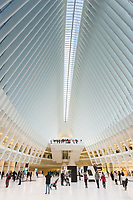One World Trade Center is visible through the skylight in the Oculus World Trade Center Transportation Hub in New York City.