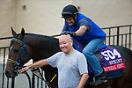 DEL MAR, CA - OCTOBER 31: Imperial Hint jockey Javier Castellano rubs trainer Luis Carvajal, Jr. as they walk to the track during morning workouts at Del Mar Thoroughbred Club on October 31, 2017 in Del Mar, California. (Photo by Jon Durr/Eclipse Sportswire/Breeders Cup)