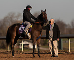 November 4, 2020: Oleksandra, trained by trainer Neil D. Drysdale, exercises in preparation for the Breeders' Cup Turf Sprint at Keeneland Racetrack in Lexington, Kentucky on November 4, 2020. Carolyn Simancik/Eclipse Sportswire/Breeders Cup