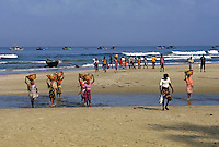 Men and woman carrying baskets of fish back from the fishing boats at dawn, Colva Beach, Goa, India.