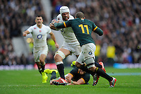 Dave Attwood of England faces up to Bryan Habana of South Africa during the QBE International match between England and South Africa at Twickenham Stadium on Saturday 15th November 2014 (Photo by Rob Munro)