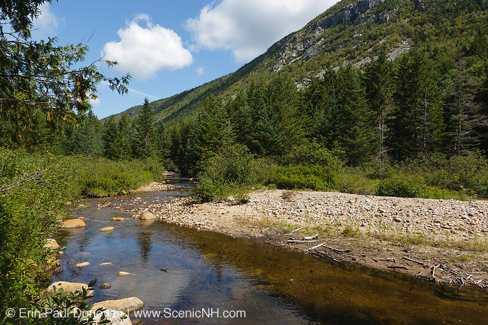Whitewall Brook in Zealand Notch of the New Hampshire White Mountains during the summer months. This area was part the Zealand Valley Railroad, which was a logging railroad in operation from 1886-1897.