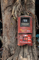 Agra, India.  Post Office Box on a Banyan Tree.