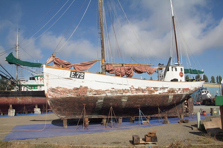 Port Townsend, Baltic ketch, Maran Atha, on the hard, fishing boat, Boat Haven Marina, Jefferson County, Olympic Peninsula, Washington State, Pacific Northwest, USA,
