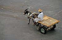 Man riding his donkey and a carriage in the early morning, Djemaa el Fna, Marrakesh, Morocco.